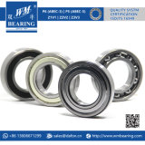 6210-2RS C3 Nylon Cage Motorcycle Parts Deep Groove Ball Bearing