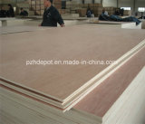 Two Time Hot Press Commercial Plywood with High Quality