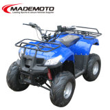 48V 500W Best Selling Electric ATV with Front & Rear Cargo Rack