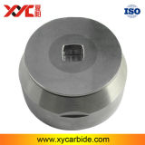 China Supply Customized Long Life Tungsten Carbide Extrusion Die