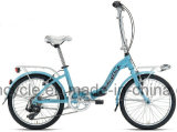 20 Inch Aluminum Frame 7 Speed Folding Bike /High Quality Light Folding Bike