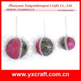 Christmas Decoration (ZY11S369-D-Z-X) Christmas Toy Ball