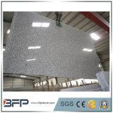 Gangsaw Light Grey Granite Slab for Countertops