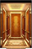 Passenger Elevator / Passenger Lift Various Capacity, Speed and Design