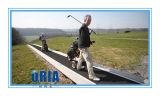 Oria Moving Sidewalk (M-20)