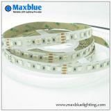 DC24V 96LEDs/M 5050 RGB LED Strip Light