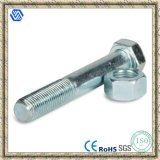 Hex Bolt Nut