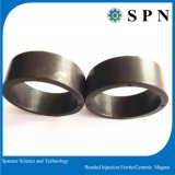Permanent Ferrite Magnet / Plastic Bonded Magne/Injection Magnet Ring for Motor