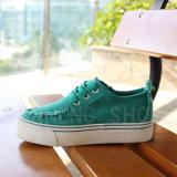 Women Shoes Lady Rubber Outsole Canvas Shoes (SNC-02073)