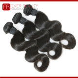 Body Wave Burmese Remy Hair Factory Price Hair Bundles