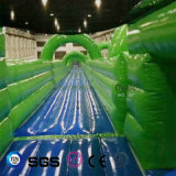 Coco Water Design Inflatable Water Slide for Water Park LG8093