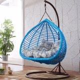 New Double Swing Outdoor Swing, Rattan Furniture, Rattan Basket (D152A)