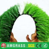 Football Grass Futsal Green Field