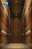 Toyon Vvvf Villa Passenger Elevator and Machine Room