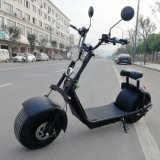 High Quality 1000W 60V/12ah Brushless Adult Electric Scooter, 2 Wheels E-Scooter Electric Motorcycle Harley