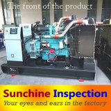 Diesel Generator Quality Inspection / Technical Inspection Service / Third Party QC Inspection / Inspection Report