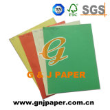 Colour Coated Packaging Cardboard Paper with 100% Wood Pulp