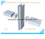Aluminum Glass Frame Curtain Wall