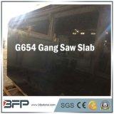 Chinese Popular G654 Padang Dark Big Slab for Floor/Wall Tiles