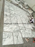 Greece Arabescato Marble Tiles for Wall and Flooring Polished