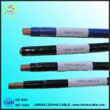 600V Copper/PVC/Nylon Thhn Electrical Wire