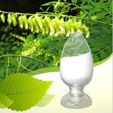 Gymnema Sylvestre Extract Gymnemic Acid 75%