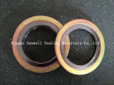 Spiral Wound Gasket with Outer Ring (SUNWELL -SW600)