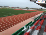 High Quality Artificial Grass for Football/Soccer Field with Core