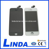 Good Quality Mobile Phone LCD for iPhone 5 LCD Screen