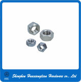 Stainless Steel Hex Nut with High Quality