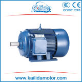 Y Series IEC Three Phase Induction Motor