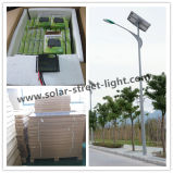 60W LED Solar Outdoor Street Light with Ce RoHS