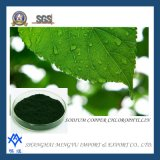 Natural Green Color Extract Sodium Copper Chlorophyllin E141