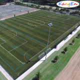 Factory Wholesale Sport Artificial Grass for Football
