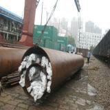 Sea Freight to Romania From Shanghai/Ningbo/Shenzhen/Guangzhou
