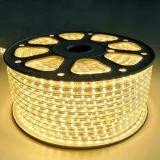 IP65 60 LEDs/M 3528SMD Flexible LED Strip Lighting 230V 110V