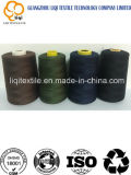 75D/2 High-Quality with High-Tenacity Polyester Embroidery Sewing Thread