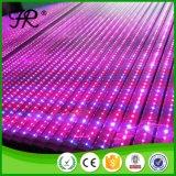 High Efficiency LED Plant Full Spectrum Grow Light