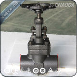 API 800lb NPT/Female Threaded Forged Gate Valve
