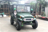 Electric Buggy 300cc Sports ATV for Adults