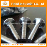 """Stainless Steel Top Quality Ss 316 3/4""""~4"""" Carriage Screw"""