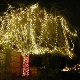 Waterproof LED String Light Rice Tree Lights for Christmas