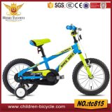 Selling Most Popular MTB Child Cycle