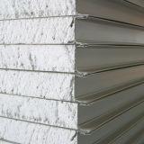 Foam Sandwich Panel for Wall /Roofing