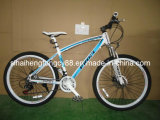 Mountain Bicycle with Best Price& Good Quality (MTB-004)