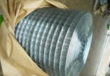 Welded Wire Mesh (DJ-133)