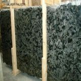 Imported Natural Polished Black Granite Slab Silver Falcon