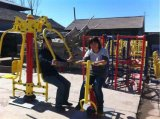 Galvanized Outdoor Fitness Machines/Playgroud Fitness Equipment with TUV-GS Certificated (Push Chairs TXJ-H001)