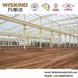 Wiskind Steel Structure with Q235B