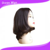 Top Quality 100% Cambodian Hair Lace Wig (HW-014)